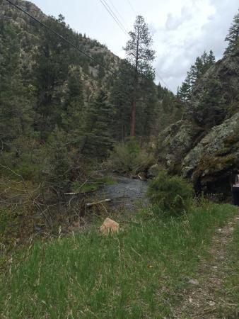 Eagle Nest, NM: stream
