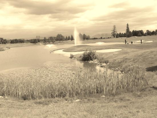 Northview Golf and Country Club : Pond for Golf balls!