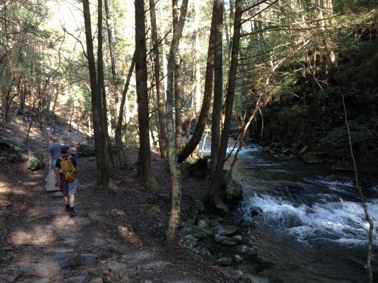 Monteagle, TN: Friends on the Fiery Gizzard Trail heading back from Sycamore Falls