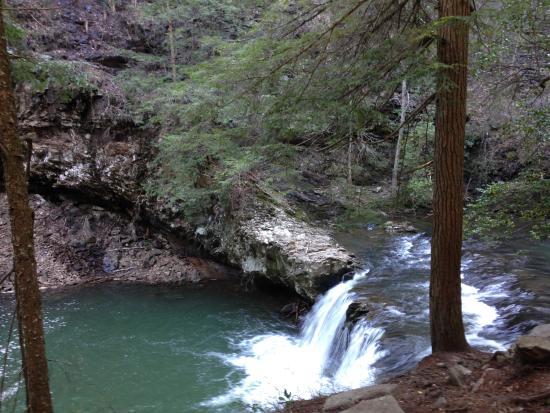 Monteagle, TN: Sycamore Falls April 2016