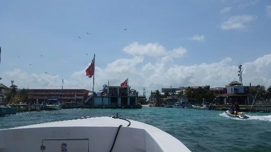 Caye Caulker, Belize: 20160524_134708_large.jpg
