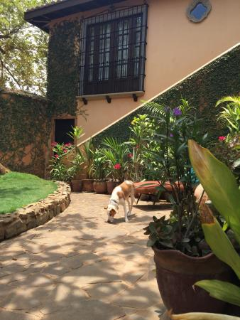 Villa Andalucia Bed and Breakfast Photo