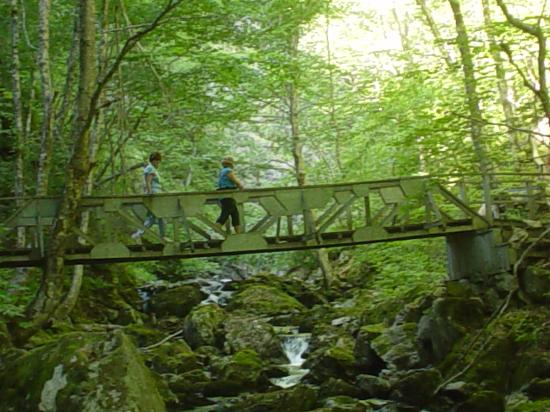 Baddeck, Canadá: Usiage Ban Falls-