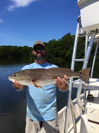Ruskin, FL: Redfish