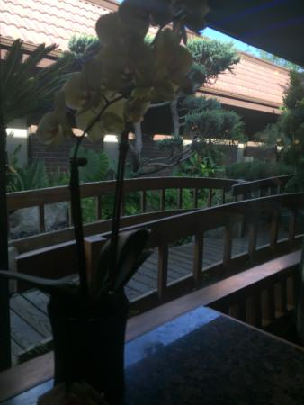 View From Table Picture Of Tokyo Garden Visalia Tripadvisor
