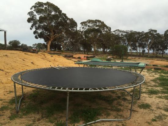 York, Australia: Large Trampoline