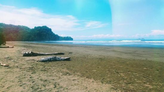 Uvita, Costa Rica: received_10204944429050437_large.jpg