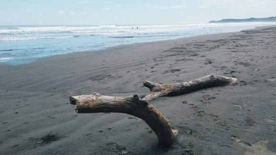Uvita, Costa Rica: received_10204944429290443_large.jpg