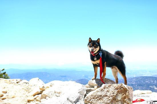 Idyllwild, Kalifornien: Tahquitz Peak