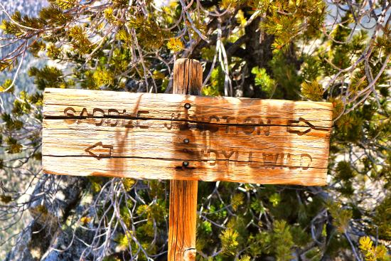 Idyllwild, Калифорния: Sign at the peak