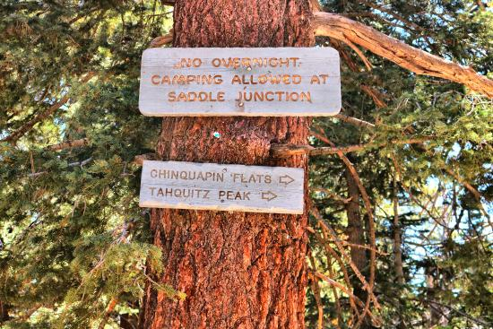 Idyllwild, Калифорния: Take the trail to the very right to Tahquitz Peak