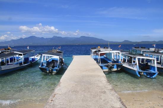 Menjangan Above Surface, Menjangan Island, West Bali