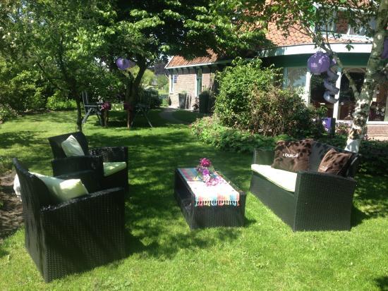 Medemblik, Países Bajos: Paars is de kleur van de tuin...
