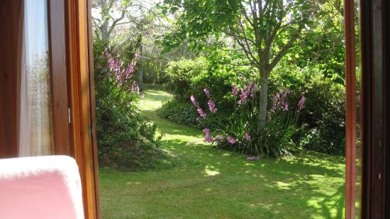 Quinta dos Curubas : our part of the garden