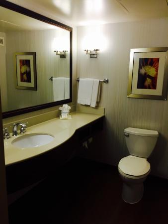 Hilton Garden Inn Raleigh-Durham/Research Triangle Park: photo1.jpg