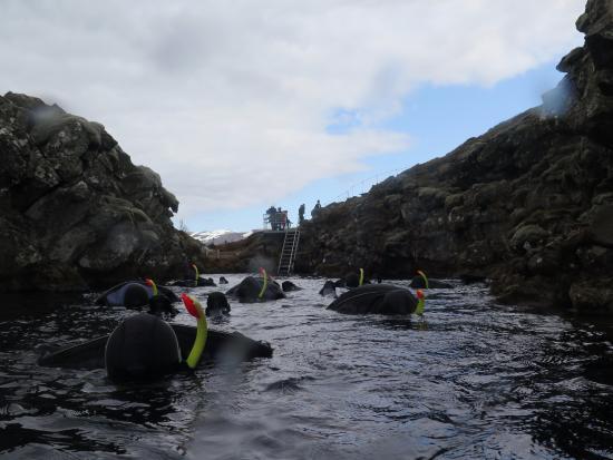 Thingvellir, Islandia: Starting the snorkel