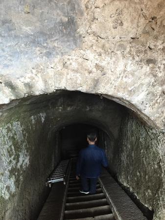 Casale della Certosa: photo taken underground