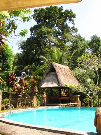 Superb Ubud accommodation and hospitality
