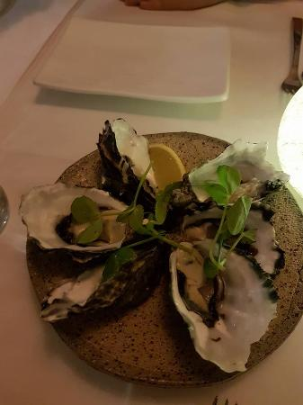 Caloundra, Australien: These were fresh oyster and they were so fresh and tasty