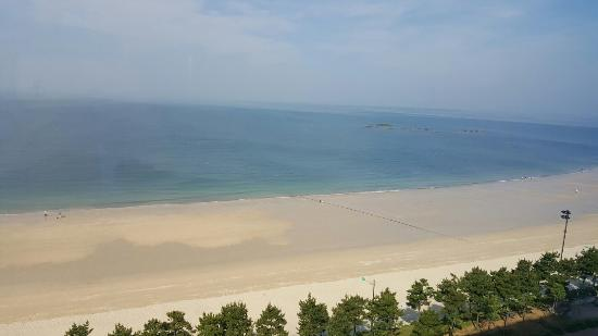 Dacheon Beach