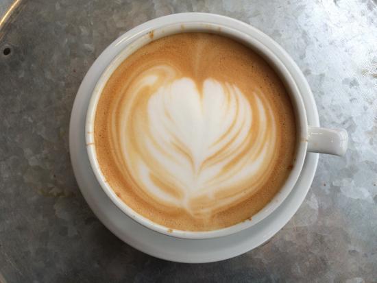 caffè verde motore haverford