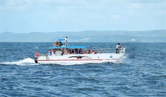 Boat Tours Maria Pineda