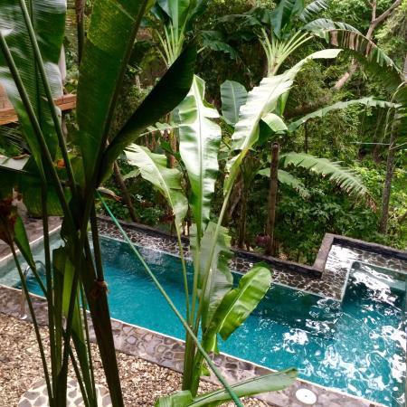 Canaima Chill House: photo0.jpg