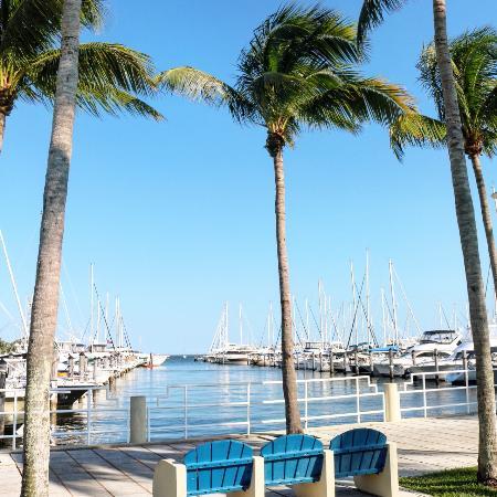 Coconut Grove (Miami, FL) - anmeldelser - TripAdvisor