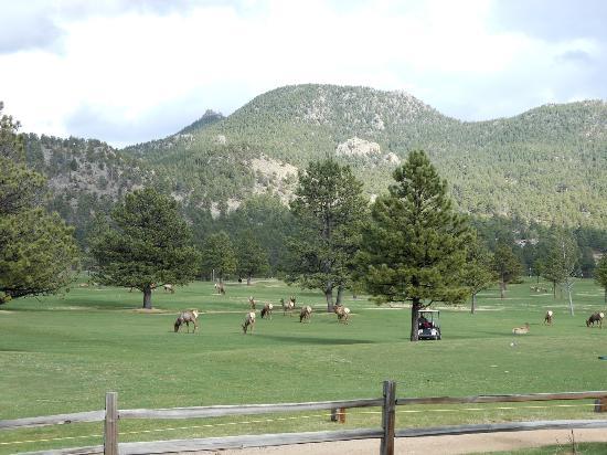 Rams Horn Village Resort Aufnahme