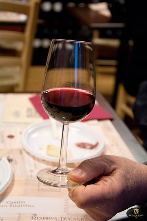 Torgiano, İtalya: Degustazione Vino