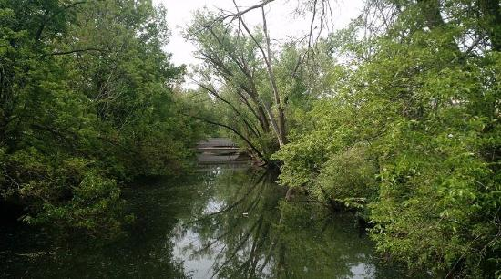 Willow Creek Picture Of Lakes Nature Preserve At