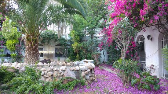 Club Hotel Iliochari : 20160525_194813_large.jpg