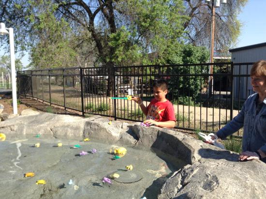 "Visalia, CA: These are some pictures of our kids ""fishing""."