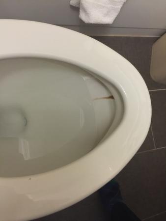 Clifton, Νιού Τζέρσεϊ: dirty toilet