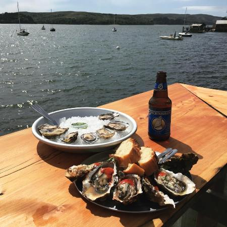 Marshall, CA: Best way to spend a sunny afternoon in Marin County!