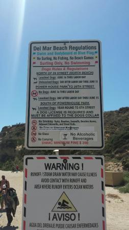 Del Mar, CA: Dog Beach
