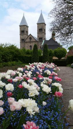 Viborg, เดนมาร์ก: The cathedral viewed from the Latinerhaven