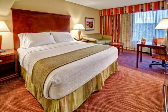 Holiday Inn-Asheville Biltmore West: King Room