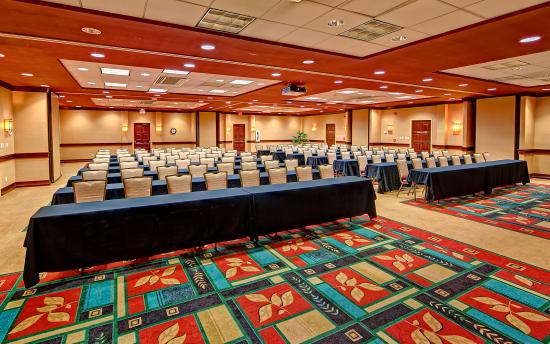 Holiday Inn-Asheville Biltmore West: Meeting Room