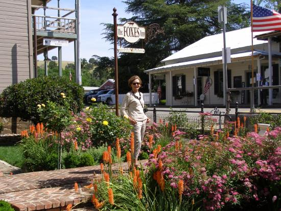 The Foxes Inn: The well tended flower garden and path to the entrance