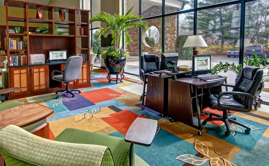 Holiday Inn-Asheville Biltmore West: Business Center