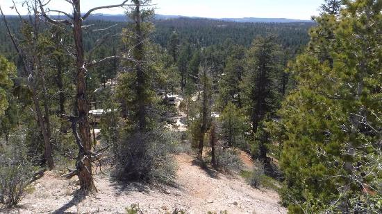 North Campground: CAmpground seen from the Rim trail