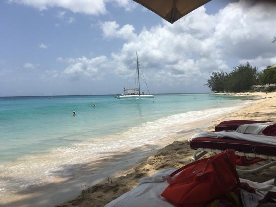 Porters, Barbados: View from my lounger