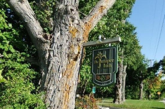 The Juniper Inn: Welcoming Maple Tree