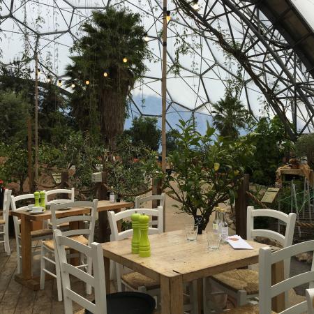 Med Terrace Restaurant: The Cafe