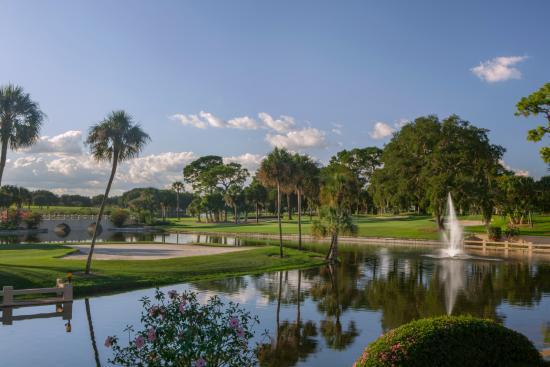 Mission Inn Golf Resort - El Campeon : El Campeon golf course