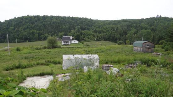 Le Canard Medeau: Vista desde el B&B