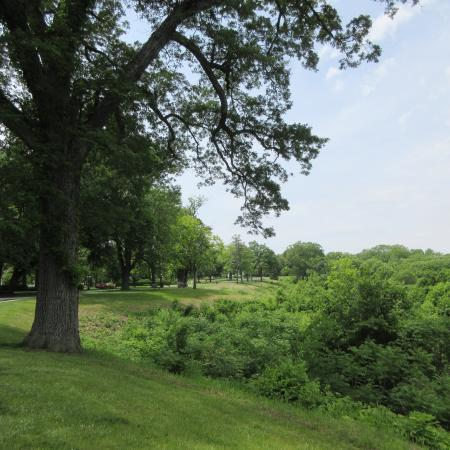 Peoria, IL: WMBD, picnic grounds, May 2106