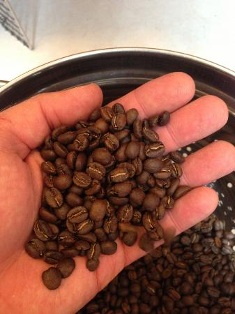 Canby, OR: Garage Coffee