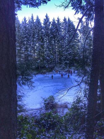 Nanaimo, كندا: Frozen wonderland